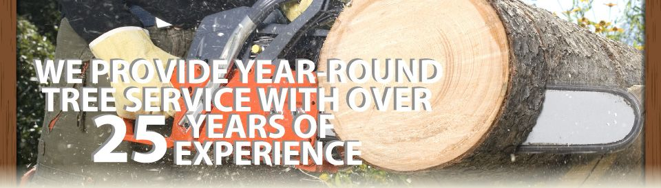 We Provide Year-Round Tree Service with over 25 Years of Experience | tree cutting